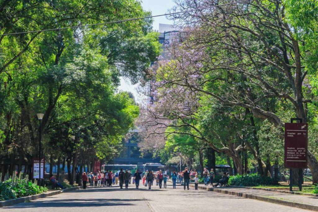 Bosque de Chapultepec, atracciones de la capital mexicana